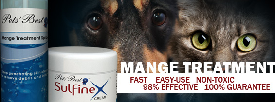 Non toxic Dog Mange Treatment header