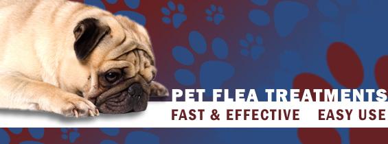 Pet Flea Control