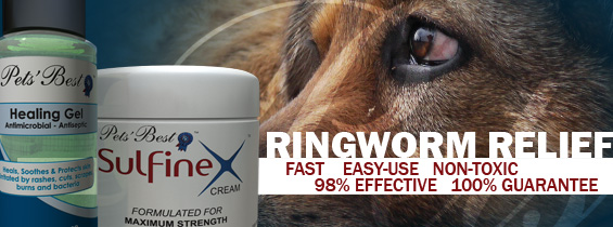 Dog Ringworm treatment header