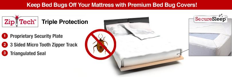 Kill Bed Bugs mattress